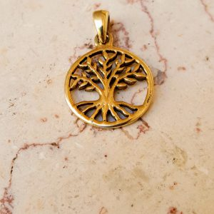 gold judaica necklace,